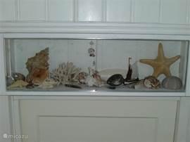 vondsten uit de zee