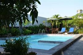 Swimming pool with sun terrace, sun loungers and parasols