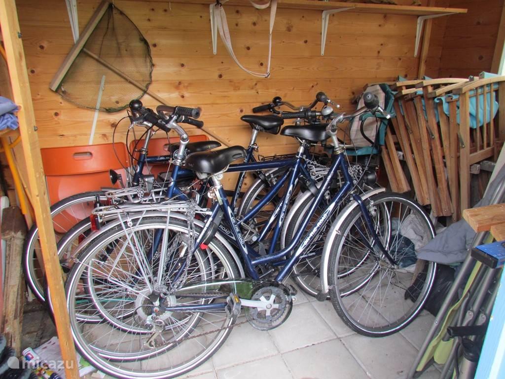Op het park zijn fietsen te huur maar wij hebben er zelf ook in ons tuinhuisje staan. Wanneer deze in orde zijn mag u ze gratis gebruiken. Er staan 2 dames en 2 heren waarvan 1 met kinderzitje achterop.