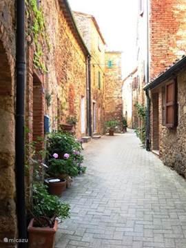 Zomaar een straatje van Belforte versierd met bloemen en planten.