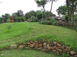 Een hoekje van de achtertuin