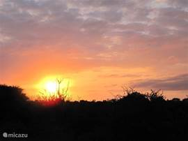 Onze eigen zonsondergang