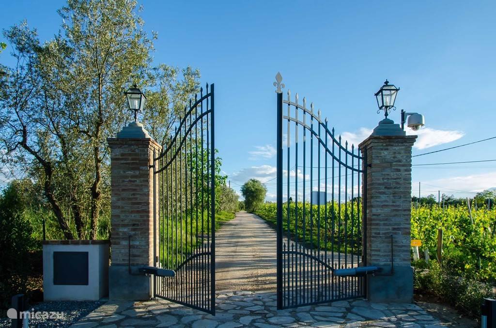 Als u voor een stedenbezoek in de omgeving wegrijdt :  door de wijngaarden