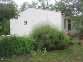 Maison 2.25 ligt in het boomrijke park naast maison 2.27 (die u eventueel ook samen kunt huren. U krijgt dan 10% korting op de huurprijs van beide huizen).