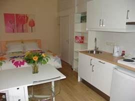 Overzicht + keuken van de luxe kamer Tulp.