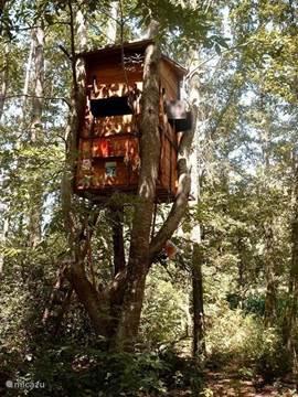 De vakantiewoning bevindt zich in een bos van 5000m2. In dat bos werd voor kinderen een leuke boomhut gebouwd waarin ze niet alleen kunnen spelen maar eventueel ook overnachten.