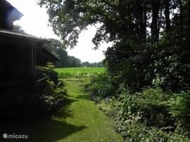 Doorkijk van de voorkant van het huis naar het westen. op het land waar momenteel in de zomer mais staat. Links de veranda, rechts de onder architectuur aangelegde border