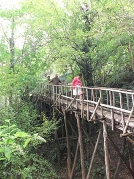 hiking in the mountains over wooden bridges
