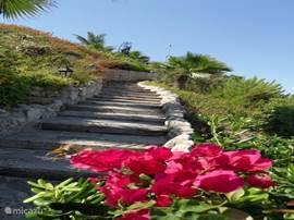 Het pad vanaf het park naar het strand.