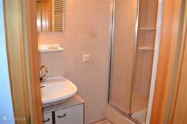Bathroom in the basement with sink and shower.
