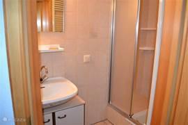 Badkamer in de kelder met wastafel en douche.