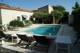 Zwembad met voldoende aantal ligzetels en met aangrenzend overdekte patio