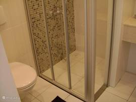 De grootste badkamer heeft een ruime douche met mozaik tegelwerk, een toilet en wastafel.