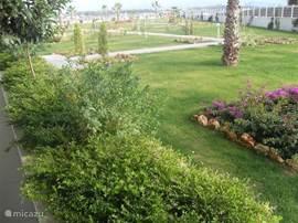 Omheind domein met 24/24 bewaking,  met wandelpaden, palmbomen, bloemperken, enz.