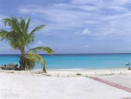On the many beaches that Curacao is rich, you can linger. Especially during the week, beaches direction of West Point are very quiet, and it seems as if you are staying at a private beach.