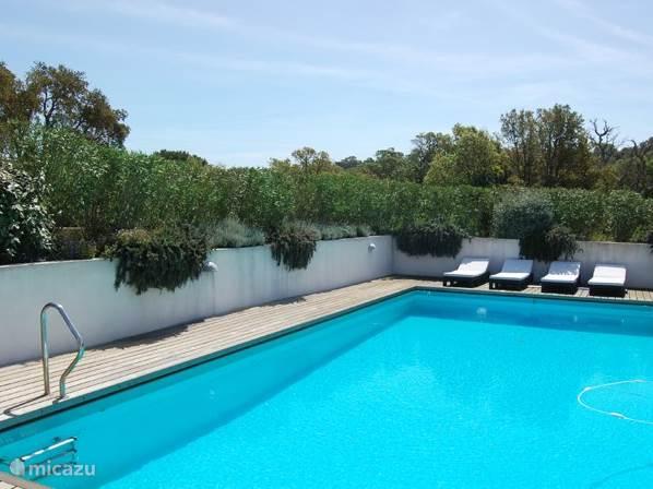 Groot zwembad met ligbedden op het terras in een prachtige tuin