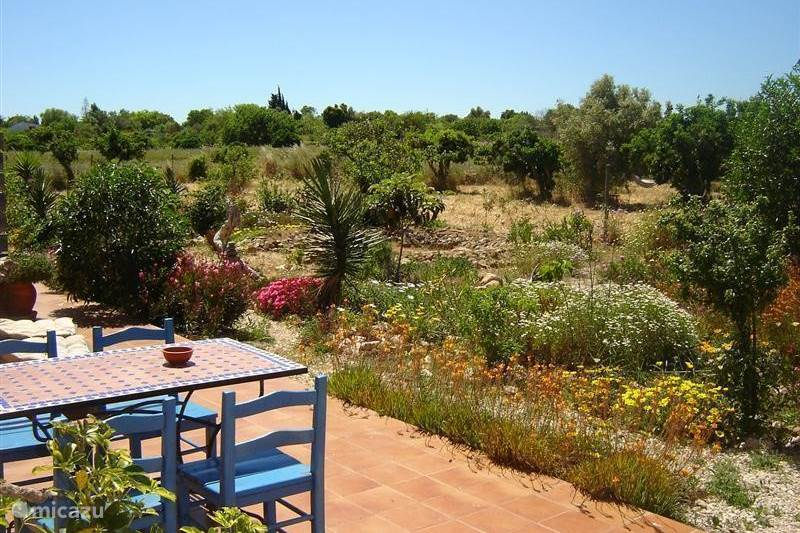 ferienhaus casa samatha in lagos algarve portugal mieten micazu. Black Bedroom Furniture Sets. Home Design Ideas