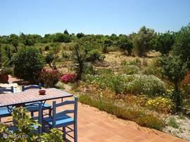 Het huisje heeft buiuten meerdere sfeervolle zitjes met uitzicht op de jkleurrijke tuin en de boomgaard.