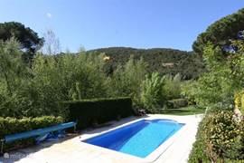 Privé zwembad met prachtig groen uitzicht.