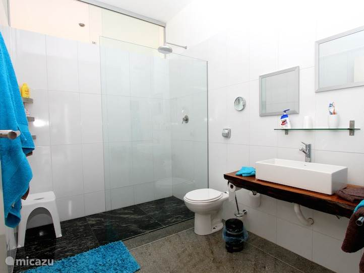 De badkamer behorende bij de blauwe kamer.