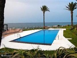 Het mooie nieuwe zwembad