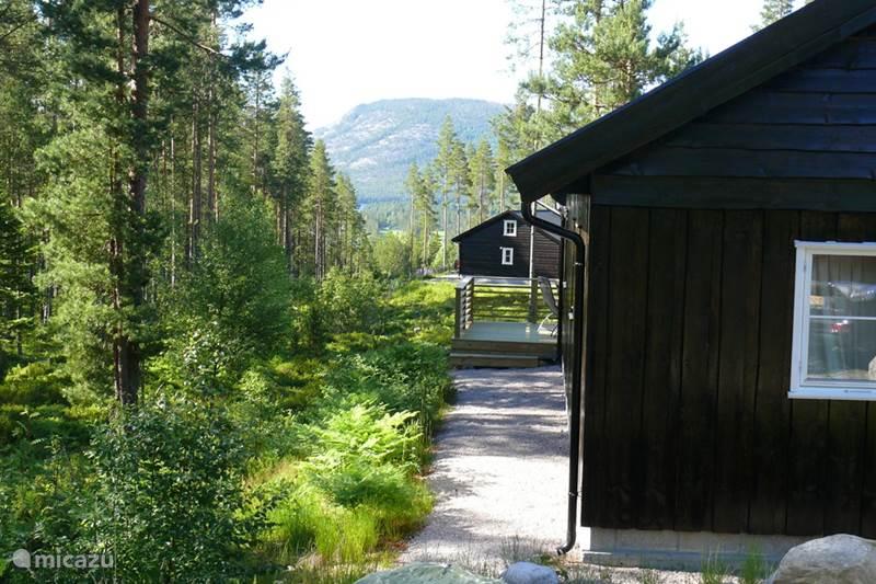 Vakantiehuis Noorwegen, Telemark, Vradal Chalet Chalet Vrådal
