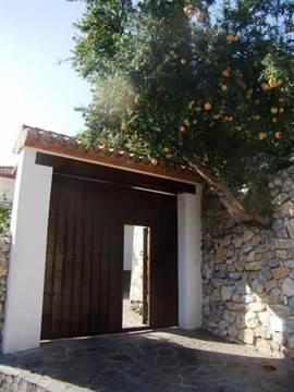 onkom poort met granaat appel boom
