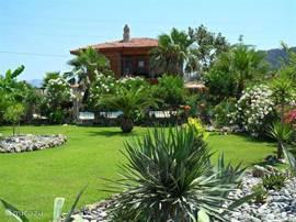 Tony`s Castle en haar tropische tuin.