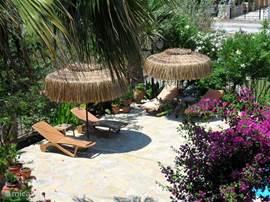 Het zwembad terras voorzien van parasols en ligstoelen (opname vanaf terras 1e verdieping)