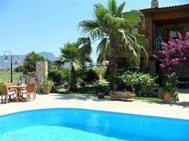 Ruim zwembad in tropische tuin.