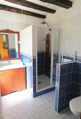 bathroom ground floor with massage shower
