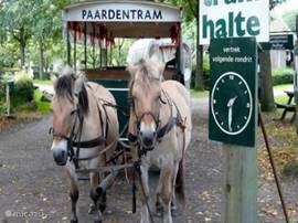 De paardetram Uffelte. Een rit door het Drentse landschap is echt een aanrader