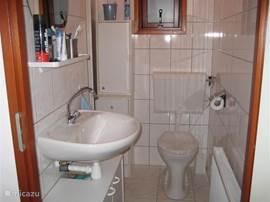 badkamer met toilet, douche van alle gemakken voorzien.