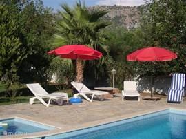 Relaxen aan de waterrand. De tuin biedt volop privacy, en het zwembad heb je helemaal voor jezelf!