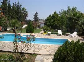 Het zwembad ligt in een grote, privacy biedende tuin.