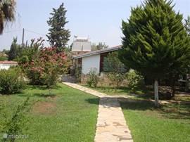 Het pad tussen het zwembad en het huis.