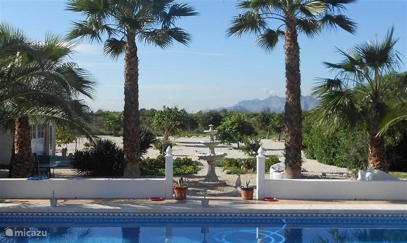 Vakantiehuis Spanje, Costa Blanca, Benejuzar bed & breakfast B&B CASA BELI