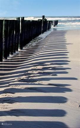 Kenmerkende strandpalen als golfbrekers.