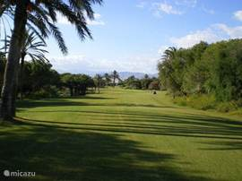 De golfbaan geeft het dorpje voor een groot deel haar naam als Oasis in de zee van de Tuinbouwkassen.