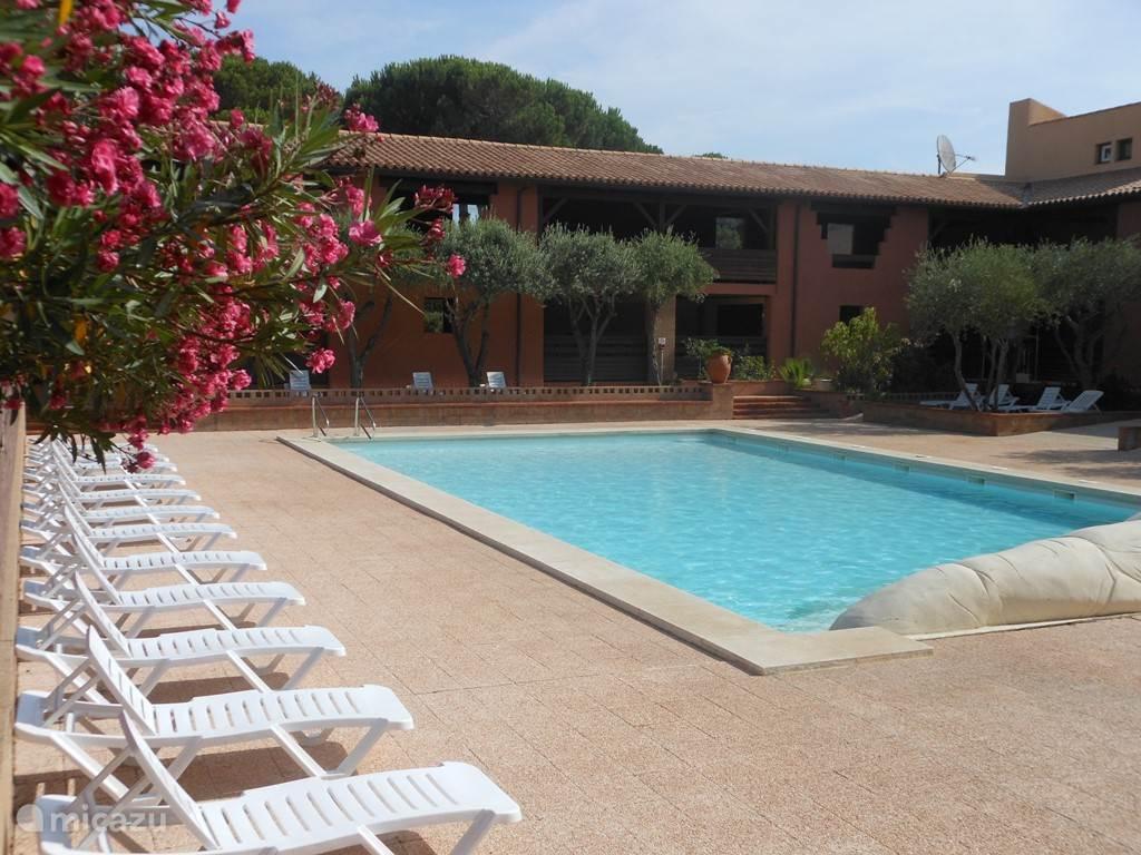 Het grote zwembad ligt lekker beschut en biedt de hele dag voldoende ligbedden voor zon of schaduw