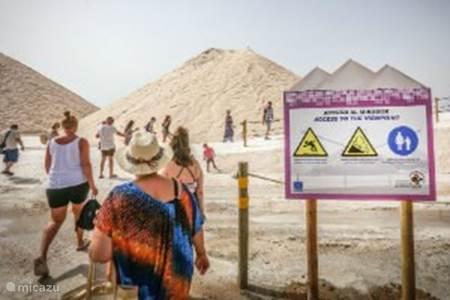 De zoutmeren van Torrevieja
