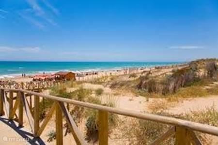 Guardamar heeft 14 km wit zandstrand (8 stranden)