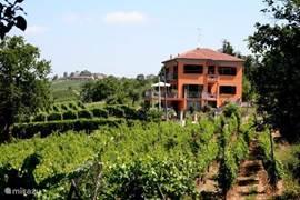 Luxe vakantiehuis met zwembad in de wijngaarden