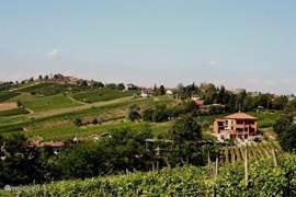 Vakantiehuis in de wijngaarden