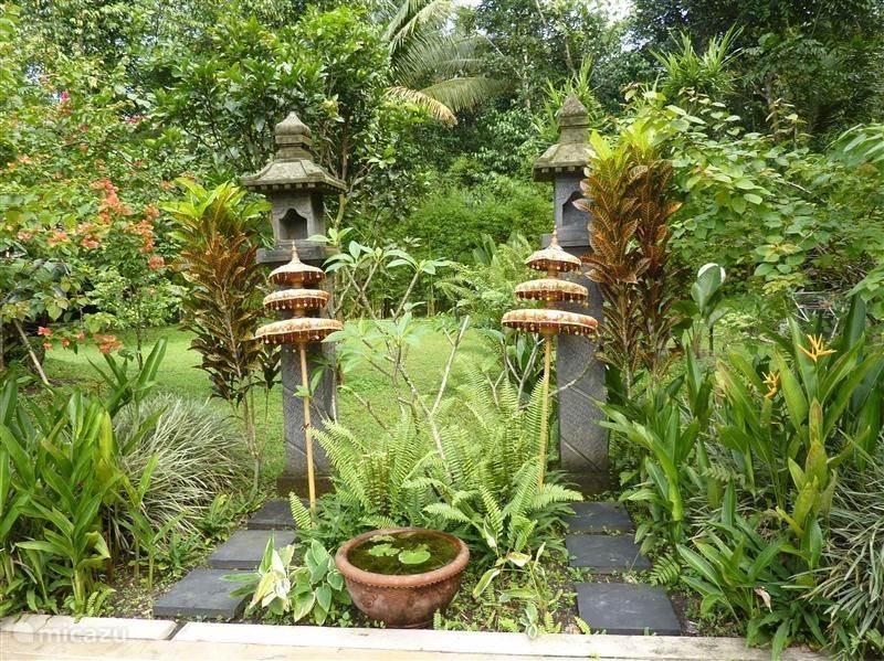 Activiteiten in Guesthouse Tanen en de tuin
