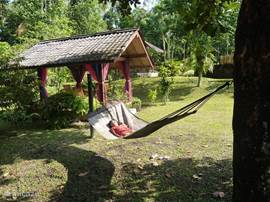 gazebo and hammock