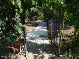 Tuin achter de villa