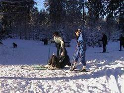 Cycling, cycling, skiing, cross country skiing, sledding and more winter fun