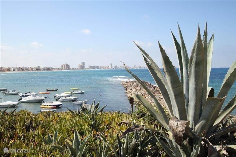 Costa Cálida, het beste klimaat van Europa
