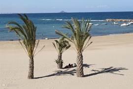 Lekker luieren op het strand.